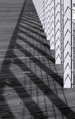 Ombre et lumière : exposition des personnels @ Université Paris Descartes (Hall d'entrée) | Paris | Île-de-France | France