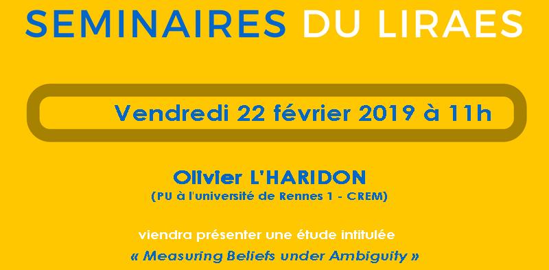 Les séminaires du LIRAES – Vendredi 22 février 2019 à 11h