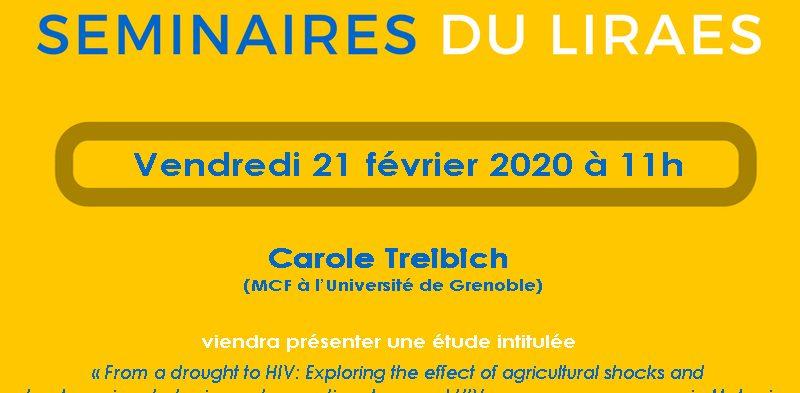Les séminaires du LIRAES – Vendredi 21 février 2020 à 11h
