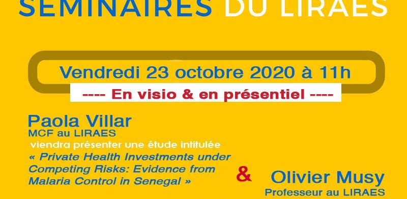 Les séminaires du LIRAES – Vendredi 23 octobre 2020 à 11h en visio et présentiel