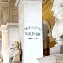 vulpian-611